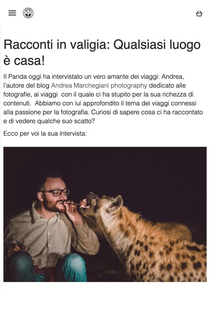 Andrea-Marchegiani-Rolling-Pandas