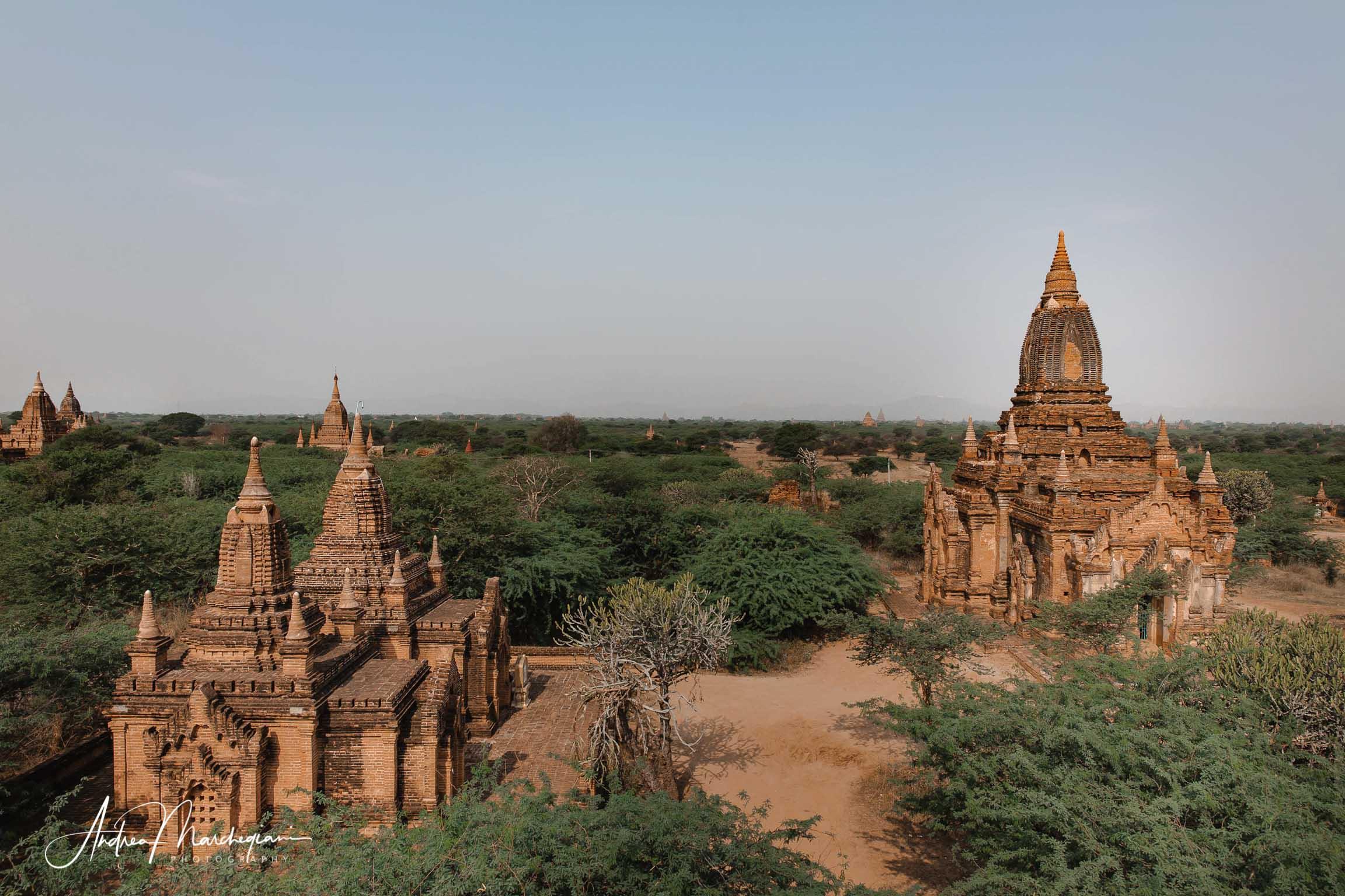 Veduta sui templi di Bagan, Birmania